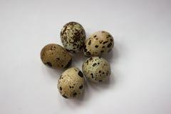 Πέντε αυγά ορτυκιών στοκ φωτογραφίες