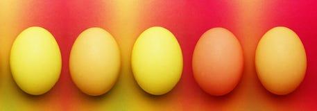 Πέντε βιολογικά οργανικά κόκκινα πορτοκαλιά κίτρινα αυγά Πάσχας σε ένα υπόβαθρο ουράνιων τόξων στοκ φωτογραφία με δικαίωμα ελεύθερης χρήσης