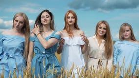 Πέντε κορίτσια με τα μακριά ξανθά μαλλιά σε έναν τομέα του χρυσού σίτου Χαμόγελο, που εξετάζει τη κάμερα
