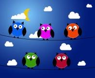 Πέντε κουκουβάγιες τη νύχτα Στοκ εικόνα με δικαίωμα ελεύθερης χρήσης
