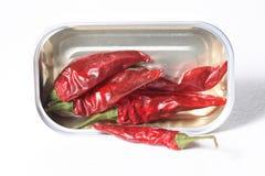 Πέντε κόκκινα πιπέρια τσίλι σε τρόφιμα μπορούν απομονωμένος στο άσπρο υπόβαθρο Στοκ φωτογραφία με δικαίωμα ελεύθερης χρήσης