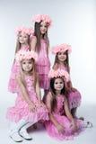 Πέντε μικρά κορίτσια στα ρόδινα φορέματα και τα στεφάνια στοκ φωτογραφία με δικαίωμα ελεύθερης χρήσης