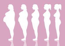 Πέντε στάδια της γυναίκας σκιαγραφιών στον τρόπο να χαθεί το βάρος, διανυσματικές απεικονίσεις απεικόνιση αποθεμάτων