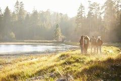 Πέντε φίλοι που περπατούν κοντά σε μια λίμνη, απόμακρη, πίσω άποψη Στοκ Φωτογραφία