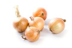 πέντε φρέσκα κρεμμύδια Στοκ εικόνα με δικαίωμα ελεύθερης χρήσης