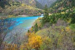 Πέντε χρωματισμένη λίμνη, Jiuzhaigou, Κίνα στοκ εικόνα με δικαίωμα ελεύθερης χρήσης