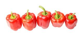 Πέντε ώριμα κόκκινα γλυκά πιπέρια στη σειρά Στοκ εικόνα με δικαίωμα ελεύθερης χρήσης