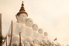 Πέντε Bigwhite Buddhas στο ναό Wat phasornkaew, άποψη Α Beauti Στοκ Φωτογραφία