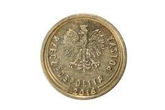 Πέντε groszy στιλβωτική ουσία zloty Το νόμισμα της Πολωνίας Μακρο φωτογραφία ο Στοκ Φωτογραφίες