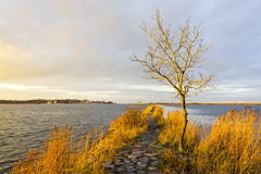 Πέρασμα κοντά στις εκβολές του ποταμού Vistula, Πολωνία Στοκ εικόνα με δικαίωμα ελεύθερης χρήσης