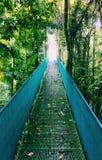 Πέρασμα μιας γέφυρας στη Κόστα Ρίκα Στοκ Εικόνες