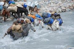 πέρασμα του ποταμού στοκ εικόνες
