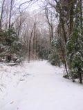 Πέρασμα χιονιού στο δάσος στοκ φωτογραφίες