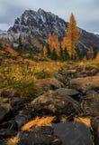Πέρασμα Ingalls, πολιτεία της Washington στοκ φωτογραφίες