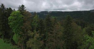 Πέρα από τα δέντρα σε Biaufond απόθεμα βίντεο