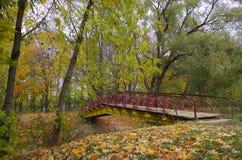 πέρα από τη λίμνη γεφυρών Στοκ εικόνες με δικαίωμα ελεύθερης χρήσης