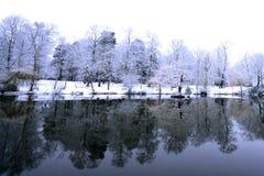 πέρα από το παγωμένο κωνιώδ&epsilon Στοκ Φωτογραφίες