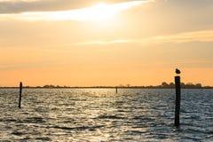 πέρα από το ύδωρ ηλιοβασιλέ Στοκ εικόνες με δικαίωμα ελεύθερης χρήσης