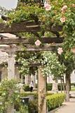 Πέργκολα των άσπρων και ρόδινων τριαντάφυλλων στην ξύλινη ακτίνα στοκ φωτογραφία