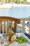 Πέρκες θάλασσας με πορτογαλικό Migas στοκ εικόνες