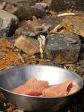 πέστροφα λιμνών λωρίδων στοκ φωτογραφίες με δικαίωμα ελεύθερης χρήσης
