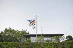 Πέταγμα κυπρίνος-Koinobori Στοκ Φωτογραφίες
