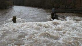 Πέταγμα πέρα από έναν πλημμυρισμένο ποταμό το χειμώνα απόθεμα βίντεο