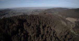 Πέταγμα πέρα από ένα δάσος στην Ισπανία απόθεμα βίντεο