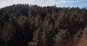 Πέταγμα πέρα από ένα δάσος στην Ισπανία φιλμ μικρού μήκους