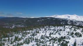 Πέταγμα πέρα από τα δέντρα χιονιού 33c ural χειμώνας θερμοκρασίας της Ρωσίας τοπίων Ιανουαρίου φιλμ μικρού μήκους