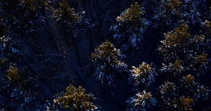 Πέταγμα πέρα από το δάσος το χειμώνα στο copter απόθεμα βίντεο
