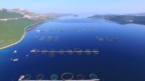 Πέταγμα πέρα από το αγρόκτημα ψαριών στη βαθιά μπλε δαλματική θάλασσα απόθεμα βίντεο