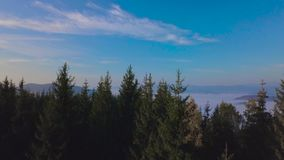 Πέταγμα πέρα από το δάσος στα βουνά φιλμ μικρού μήκους