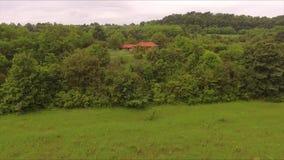 Πέταγμα προς το σπίτι που βρίσκεται στο δάσος απόθεμα βίντεο