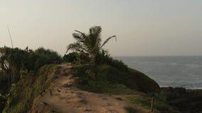 Πέταγμα σε έναν κηφήνα πέρα από σε έναν κηφήνα πέρα από ένα νησί στον ωκεανό απόθεμα βίντεο