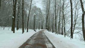 Πέταγμα στο χειμερινό πάρκο Χρησιμοποιημένος επαγγελματικός αναρτήρας stabilazer απόθεμα βίντεο