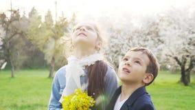 Πέταλα θαυμασμού αδελφών και αδελφών μικρών παιδιών άνοιξης που πέφτουν από το δέντρο στη φύση σε σε αργή κίνηση εορτασμός έννοια απόθεμα βίντεο