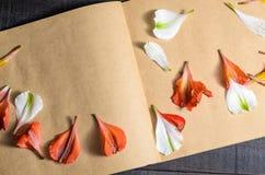 Πέταλα λουλουδιών επιστολών αγάπης Στοκ φωτογραφία με δικαίωμα ελεύθερης χρήσης