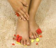 πέταλα ποδιών womans Στοκ Εικόνες