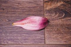 Πέταλο του ρόδινου λουλουδιού κρίνων σε μια ξύλινη αγροτική επιτραπέζια κινηματογράφηση σε πρώτο πλάνο σε ένα βάζο, διάστημα αντι στοκ φωτογραφία