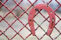 πέταλο Στοκ φωτογραφία με δικαίωμα ελεύθερης χρήσης