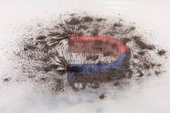 Πέταλα μαγνητικά Στοκ φωτογραφία με δικαίωμα ελεύθερης χρήσης