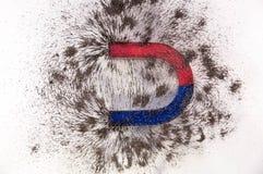 Πέταλα μαγνητικά Στοκ εικόνα με δικαίωμα ελεύθερης χρήσης