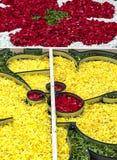 Πέταλα λουλουδιών στην κατακόρυφο Στοκ Φωτογραφίες