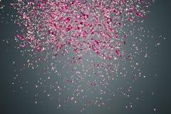 Πέταλα λουλουδιών στο σκοτεινό υπόβαθρο Στοκ Εικόνες