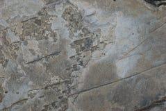 πέτρα ανασκόπησης Στοκ φωτογραφίες με δικαίωμα ελεύθερης χρήσης