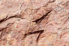 Πέτρα βράχου με την καφετιά σύσταση απόχρωσης, εκλεκτική εστίαση Για το υπόβαθρο, σκηνικό, υπόστρωμα, χρήση σύνθεσης Στοκ Φωτογραφίες