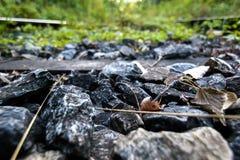 Πέτρα κινηματογραφήσεων σε πρώτο πλάνο από μια εγκαταλειμμένη ράγα στο δάσος Στοκ φωτογραφίες με δικαίωμα ελεύθερης χρήσης