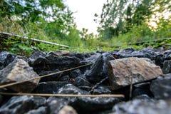 Πέτρα κινηματογραφήσεων σε πρώτο πλάνο από μια εγκαταλειμμένη ράγα στο δάσος Στοκ Φωτογραφία