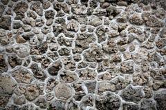 Πέτρα κοραλλιών Στοκ εικόνα με δικαίωμα ελεύθερης χρήσης